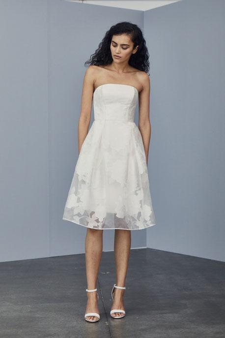 Rose Fil-coupé Dress -